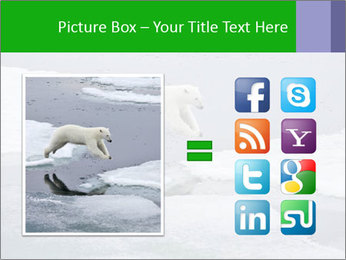 Polar bear PowerPoint Template - Slide 21