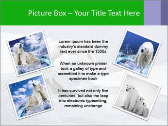 Polar bear PowerPoint Template - Slide 24