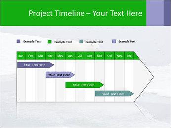 Polar bear PowerPoint Template - Slide 25