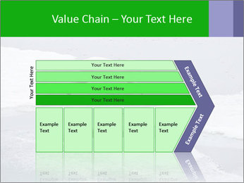 Polar bear PowerPoint Template - Slide 27