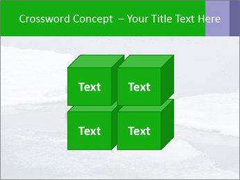 Polar bear PowerPoint Template - Slide 39