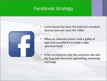 Polar bear PowerPoint Template - Slide 6