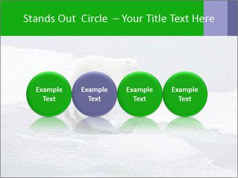 Polar bear PowerPoint Template - Slide 76