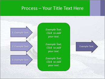 Polar bear PowerPoint Template - Slide 85