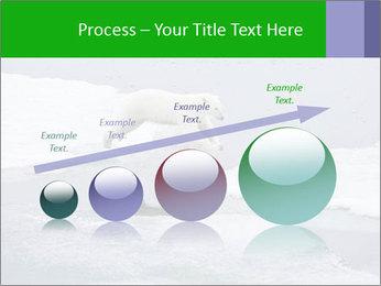Polar bear PowerPoint Template - Slide 87