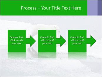 Polar bear PowerPoint Template - Slide 88