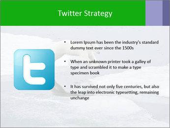 Polar bear PowerPoint Template - Slide 9