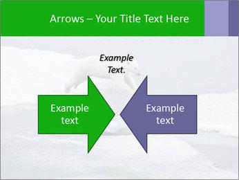 Polar bear PowerPoint Template - Slide 90