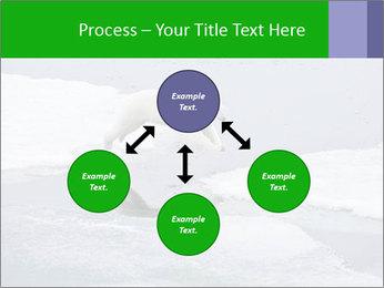Polar bear PowerPoint Template - Slide 91