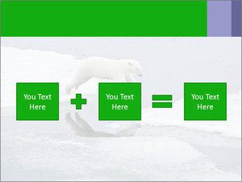 Polar bear PowerPoint Template - Slide 95