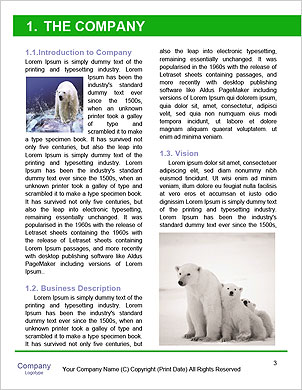 0000092804 Word Template - Page 3