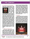 0000092808 Word Template - Page 3