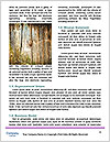 0000092810 Word Templates - Page 4