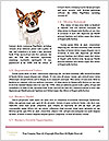 0000092812 Word Templates - Page 4