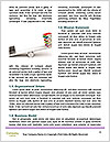 0000092816 Word Template - Page 4