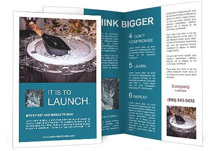 0000092818 Brochure Template