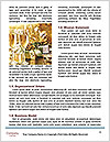 0000092818 Word Templates - Page 4