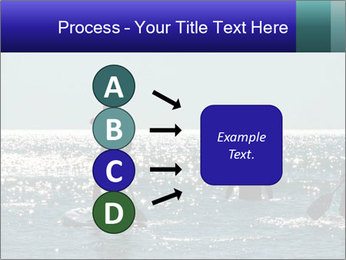 Group on the water PowerPoint Template - Slide 94