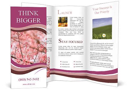 0000092828 Brochure Template