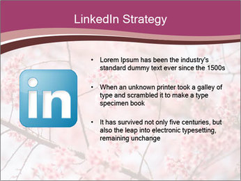 Beautiful cherry blossom PowerPoint Template - Slide 12
