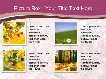 Beautiful cherry blossom PowerPoint Template - Slide 14
