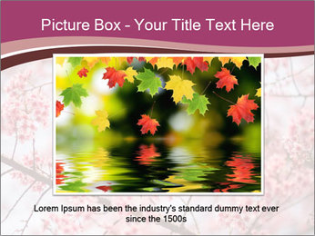 Beautiful cherry blossom PowerPoint Template - Slide 16