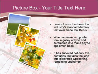 Beautiful cherry blossom PowerPoint Template - Slide 17