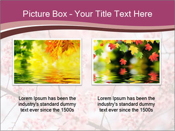 Beautiful cherry blossom PowerPoint Template - Slide 18
