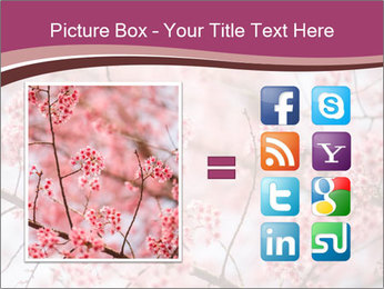 Beautiful cherry blossom PowerPoint Template - Slide 21