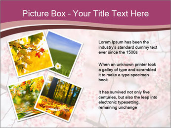 Beautiful cherry blossom PowerPoint Template - Slide 23