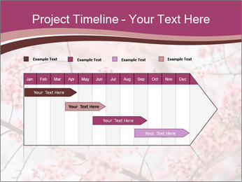 Beautiful cherry blossom PowerPoint Template - Slide 25