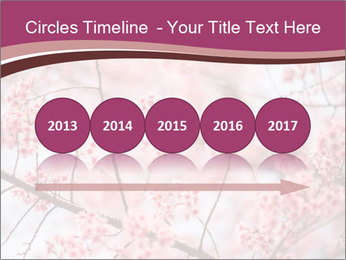 Beautiful cherry blossom PowerPoint Template - Slide 29