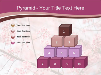 Beautiful cherry blossom PowerPoint Templates - Slide 31