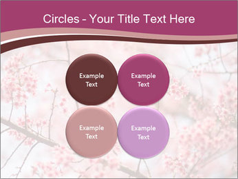Beautiful cherry blossom PowerPoint Template - Slide 38