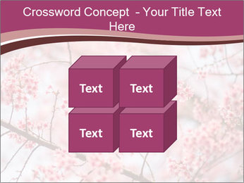 Beautiful cherry blossom PowerPoint Templates - Slide 39