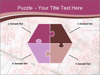 Beautiful cherry blossom PowerPoint Template - Slide 40