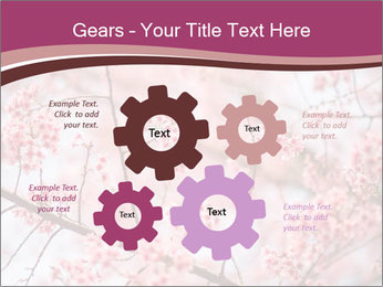 Beautiful cherry blossom PowerPoint Template - Slide 47