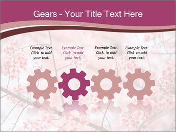 Beautiful cherry blossom PowerPoint Template - Slide 48
