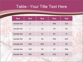 Beautiful cherry blossom PowerPoint Template - Slide 55