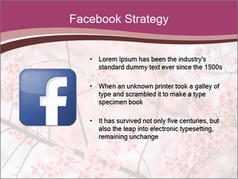 Beautiful cherry blossom PowerPoint Template - Slide 6