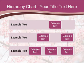 Beautiful cherry blossom PowerPoint Templates - Slide 67