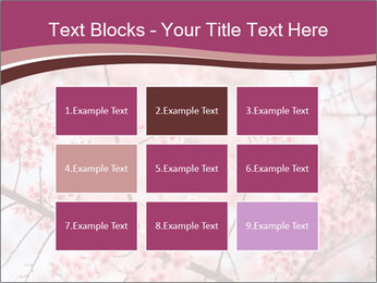 Beautiful cherry blossom PowerPoint Template - Slide 68