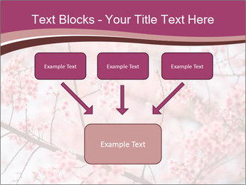 Beautiful cherry blossom PowerPoint Template - Slide 70