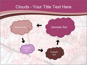 Beautiful cherry blossom PowerPoint Template - Slide 72