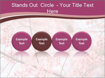 Beautiful cherry blossom PowerPoint Template - Slide 76