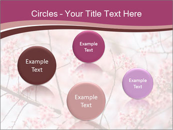 Beautiful cherry blossom PowerPoint Template - Slide 77