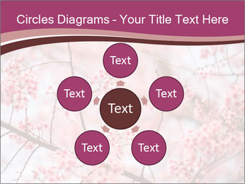 Beautiful cherry blossom PowerPoint Template - Slide 78