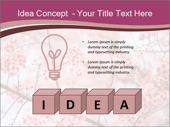 Beautiful cherry blossom PowerPoint Template - Slide 80