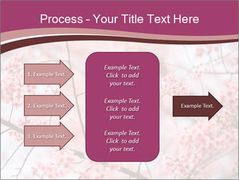 Beautiful cherry blossom PowerPoint Template - Slide 85
