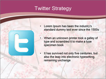 Beautiful cherry blossom PowerPoint Template - Slide 9